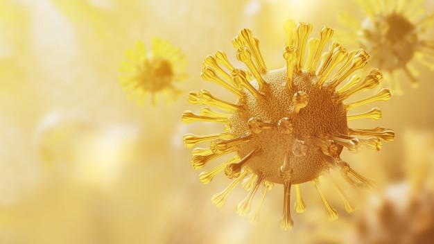 O papel da vitamina D no combate ao Covid 19